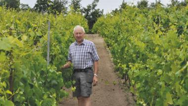 Vinbønders regler ændres