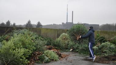 Ekstra meget pap på genbrugspladsen i Aars