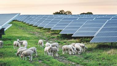 DN og solcellefirma går nu hånd i hånd