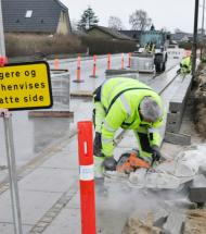 Boulevard-træer i Aars er fjernet