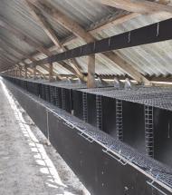 Lokal minkavler håber på afklaring i 2021